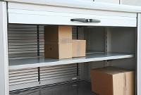 Posttransporter verfügen über eine Ladekapazität von bis zu 600 kg