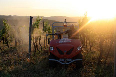 Elektrotransporter beim Einsatz im Weingut